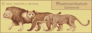 north african carnivores