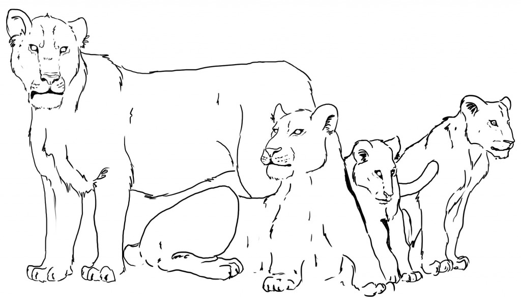 Sketch of a pride of Cave lions. Note the lack of manes on the big standing male. Art by Tabitha Paterson (@TabithaPaterson)
