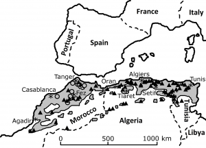 Documented lion sightings since the middle ages across the Maghreb biome of the southern Mediterranean (light grey shading) north of the Sahara in North Africa (AD1500–1960). Open circles depict locations of general historical observations documented before 1800, adapted from [2]. Details can be sourced from [2, 8, 15]. Asterisks denote the locations of the various named major human population centres.