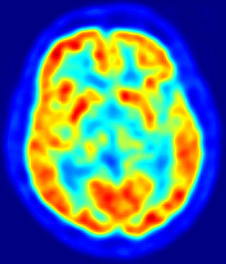Our brains process rational, physical & emotional responses to the wider world