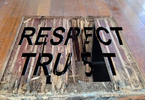 Image Respect Trust Termite Assumption