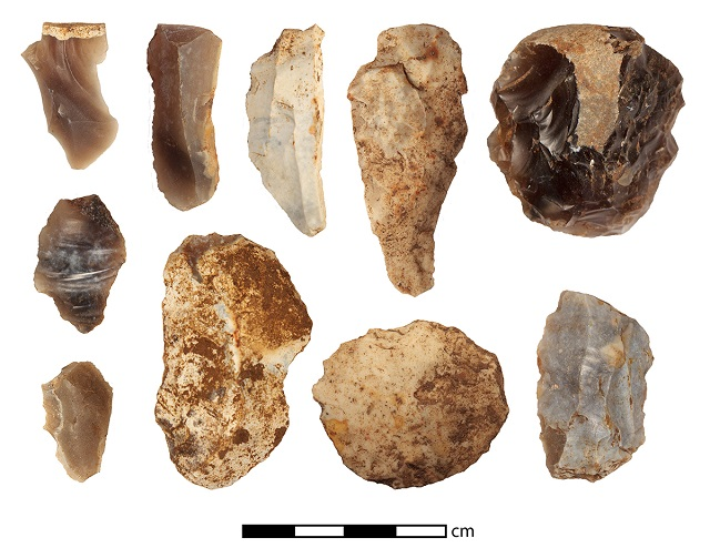 A selection of flint from last season collected during systematic survey near the beck. Can you spot the tools and flakes?