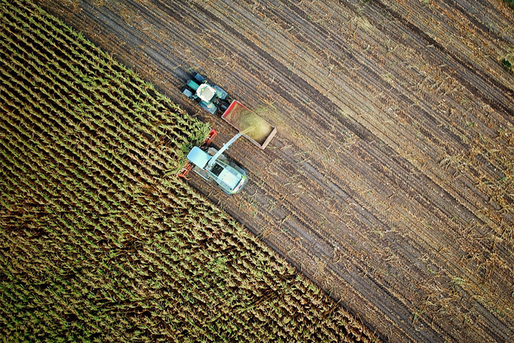 Ploughed field with tractor