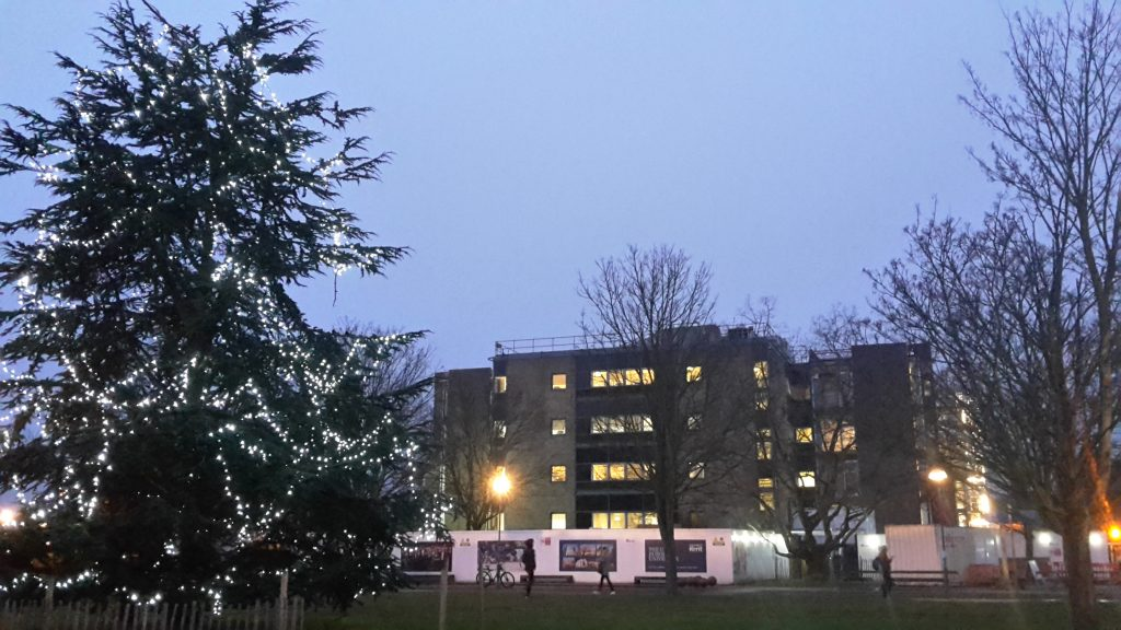 templeman-east-with-christmas-tree-6