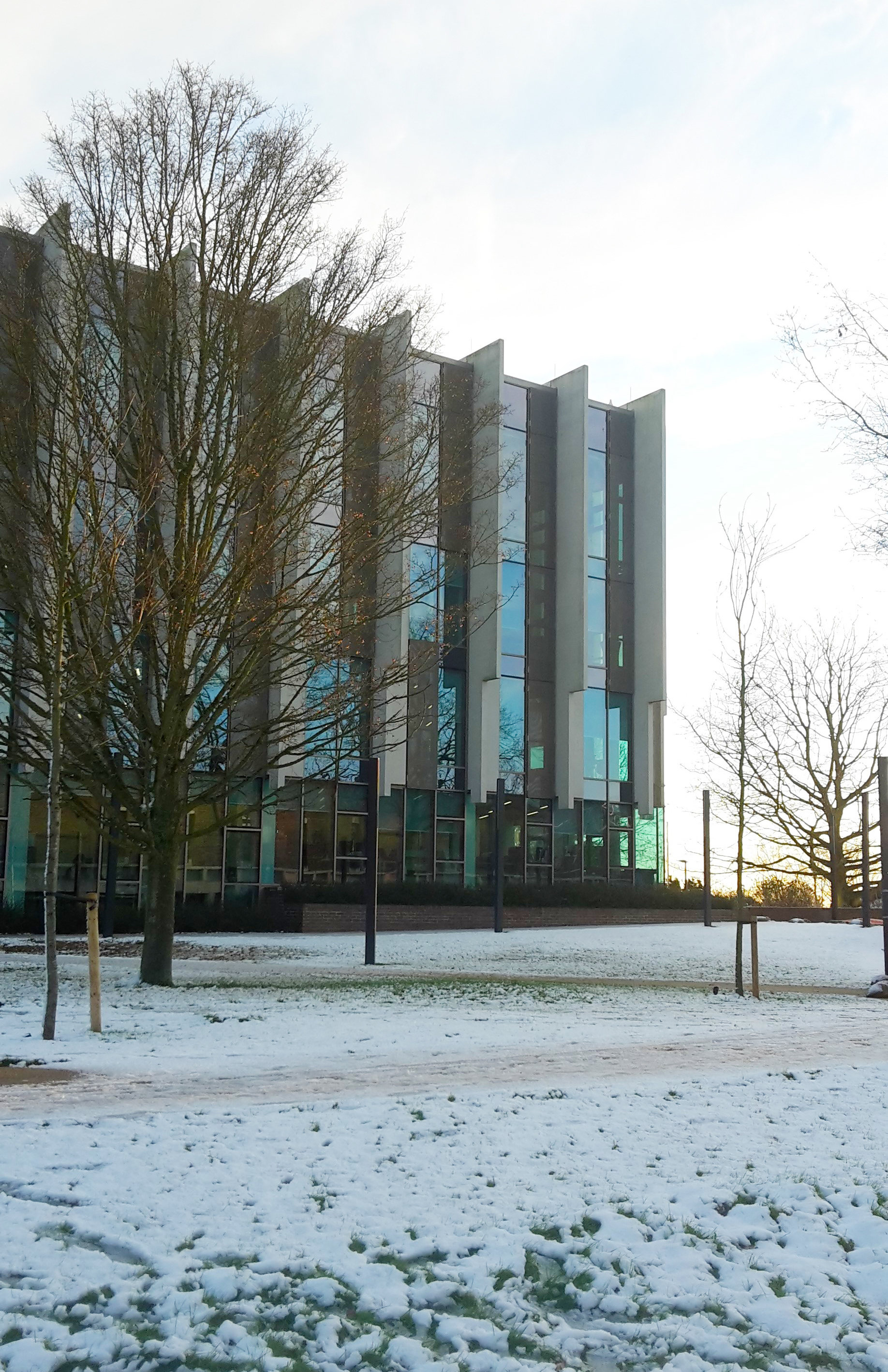 Templeman Library in the snow
