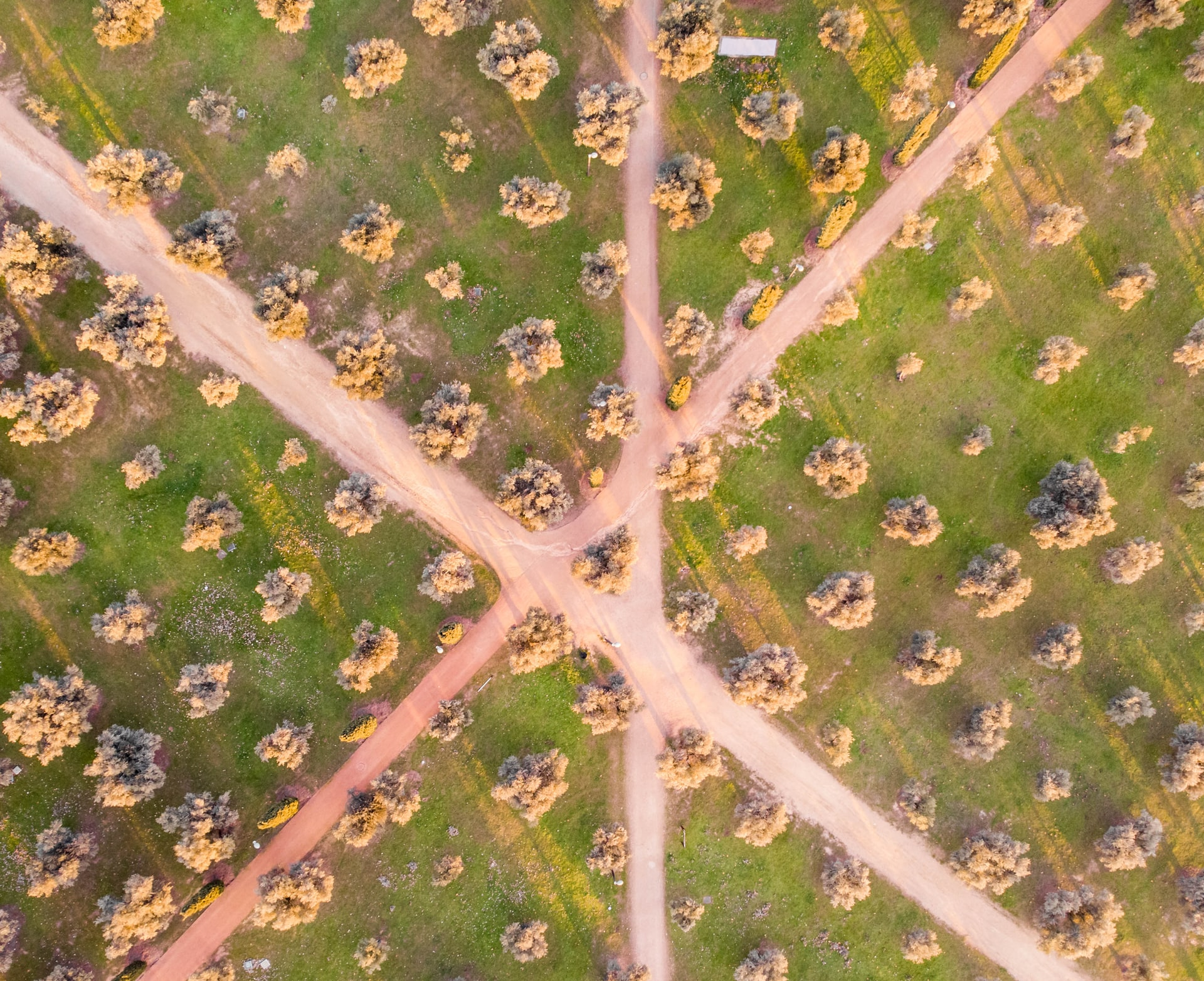 Arial photgraph of roads bisecting a grassed area with trees grouped into different sections