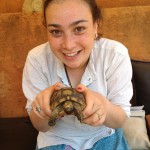An image of Bjork with a Tortoise