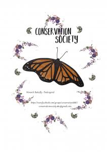 butterfly_leaflet