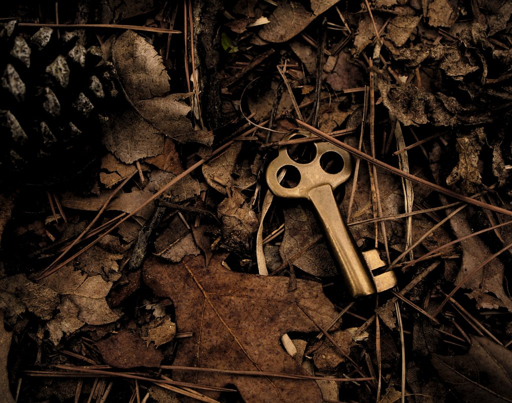 Brass key nestled in leaves