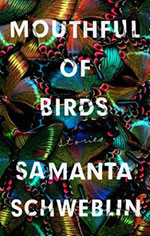 Mouthful of Birds by Samanta Schweblin front cover