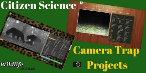 Citizen Science Camera Trap Projects logo
