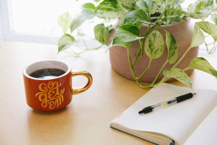Mug on desk with plant and notepad