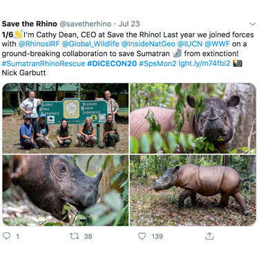 """Cathy Dean's first tweet: """"I'm Cathy Dean, CEO at Save The Rhino! Last year we joined forces with @RhinosIRF @Global_Wildlife @InsideNatGeo @IUCN @WWF on a ground-breaking collaboration to save Sumatran rhinos from extinction! #SumatranRhinoRescue #DICECON20"""""""