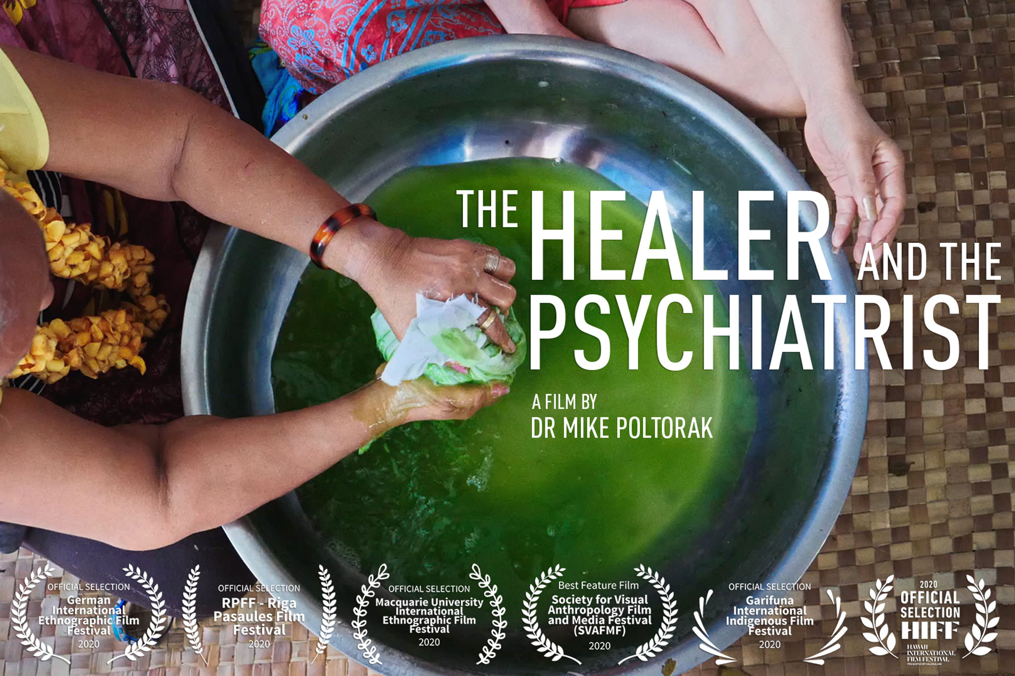 The Healer and The Psychiatrist poster