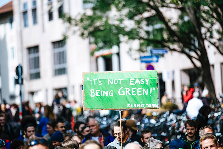 Placard reading' It's not easy being green! - Kermit'