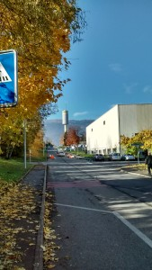 A view from inside CERN