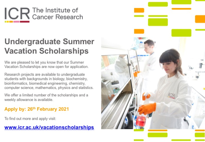 Undergraduate summer scholarships with ICR poster