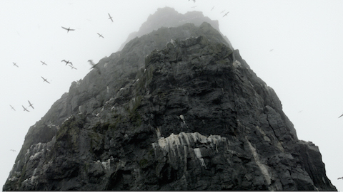 Lesions in the Landscape Stac Lee with gannets