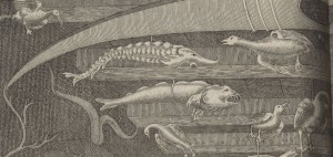 Pop into the Gallery to learn what this intriguing illustration is all about.