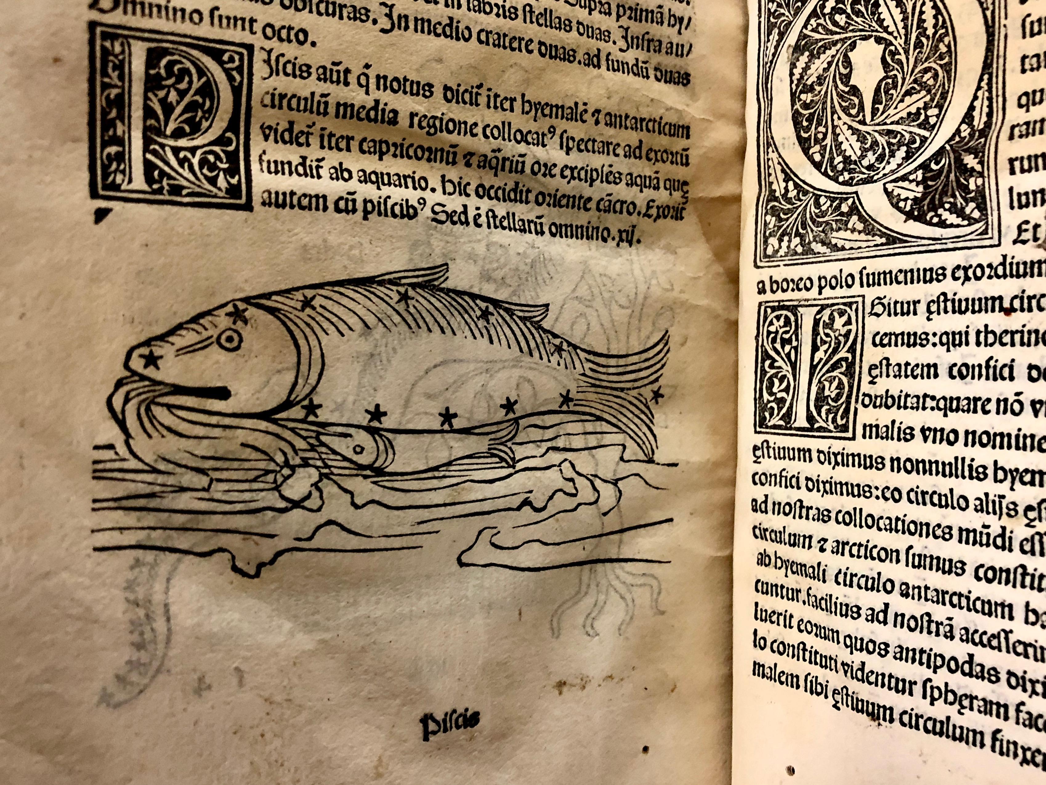 Starry fish in 'Nouicijs adolescetib': ad astronomica remp: capessenda aditu impenetratib' by Johannes de Sacro Bosco, 1482, Venice (Maddison Collection, 1D1)