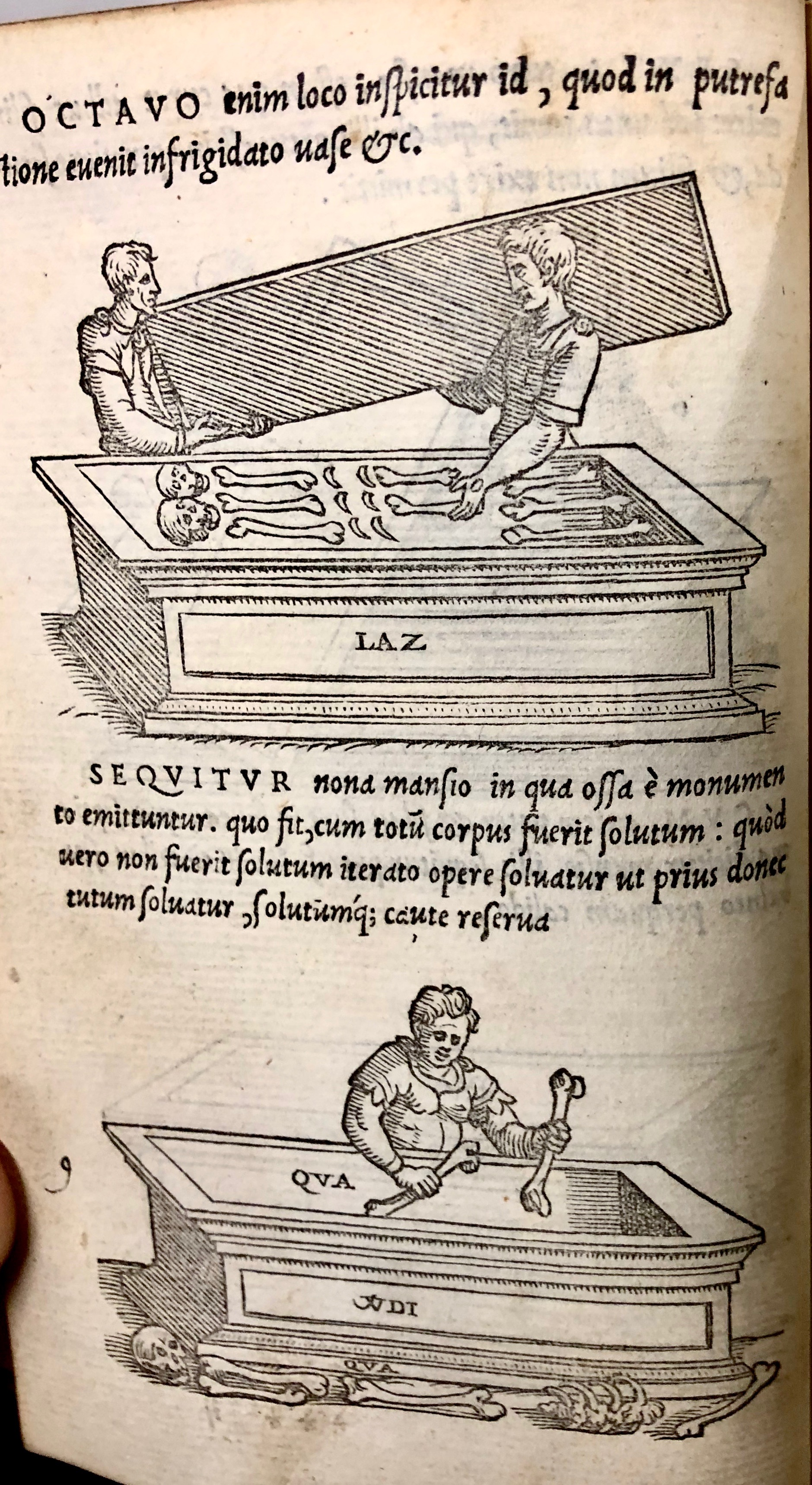 Step eight: The putrified ashes are inspected.  Step nine: the bones are taken from the tomb. From 'Pretiosa margarita : novella de thesauro, ac pretiosissimo philosophorum lapide' by Giano Lacinio, 1546, Venice. (Maddison Collection 2B7, F10528400)