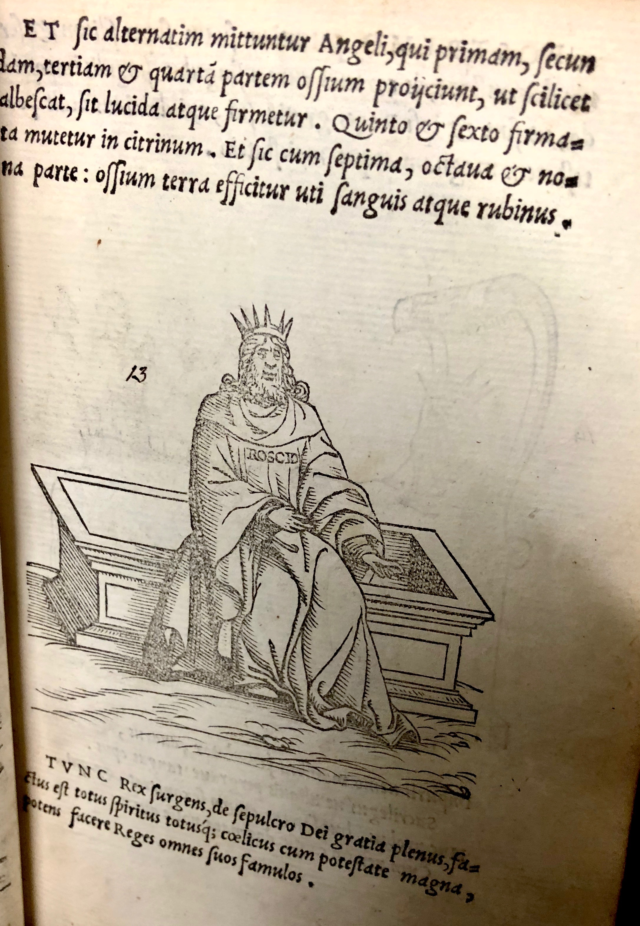 Step thirteen: the  King rises from his tomb! From 'Pretiosa margarita : novella de thesauro, ac pretiosissimo philosophorum lapide' by Giano Lacinio, 1546, Venice. (Maddison Collection 2B7, F10528400)