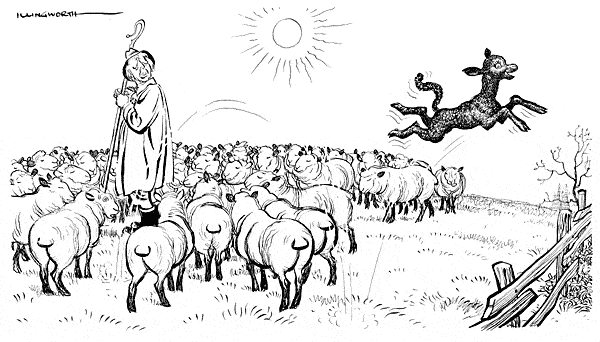 Cartoon by Leslie Illingworth showing Harold Macmillan as a shepherd in a field of sheep, with one black sheep leaping off to the side