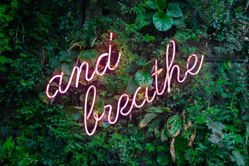 "neon sign of ""and breathe"" on leaf background"
