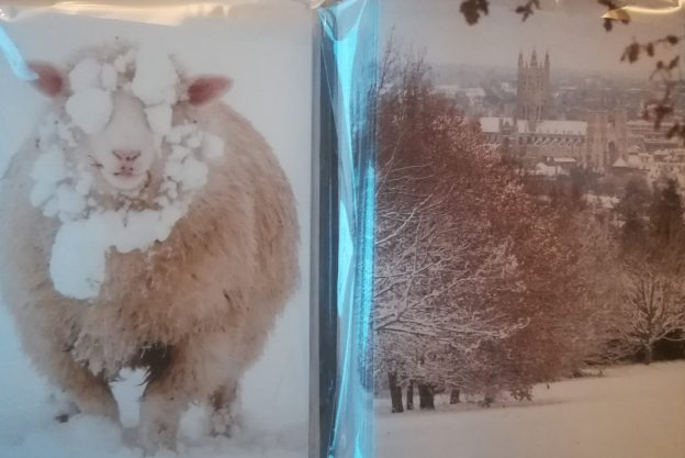 The card features a snowy view of the cathedral from campus and a snowy sheep