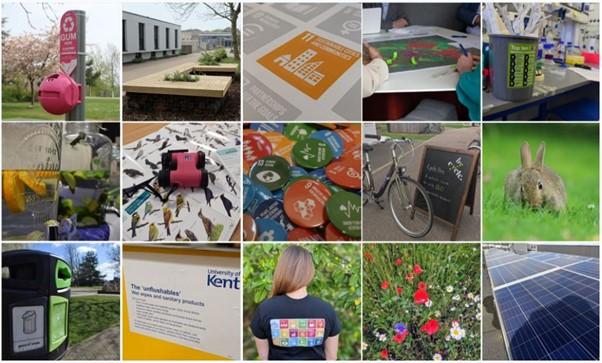 Sustainability photo collage