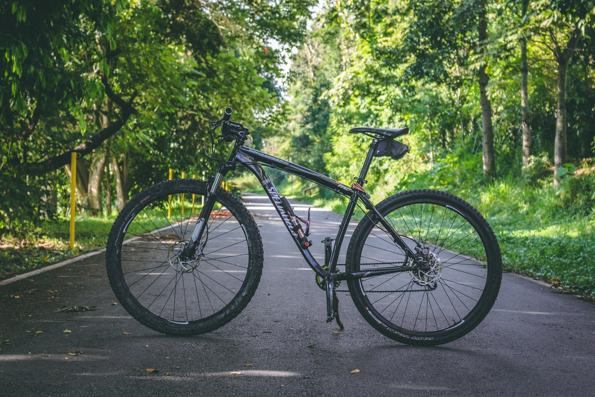 Bike in road with greenery